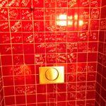 pedzouille-bassecour-toilettes